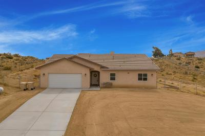 Apple Valley Single Family Home For Sale: 9727 Merino Avenue