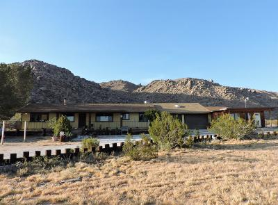 Apple Valley Single Family Home For Sale: 24373 Shoshone Road