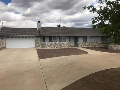 Apple Valley Single Family Home For Sale: 11025 Navajo Road