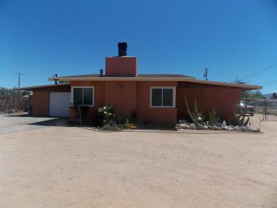 Apple Valley Single Family Home For Sale: 13195 Yakima Road