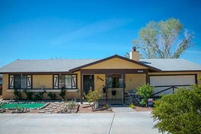 Apple Valley Single Family Home For Sale: 22747 South Road