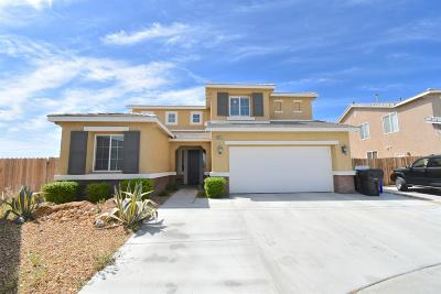 Victorville Single Family Home For Sale: 12651 High Vista Street