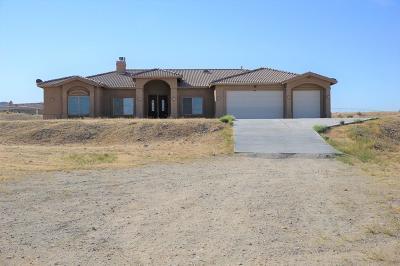 Helendale Single Family Home For Sale: 29499 Gunsmoke Road