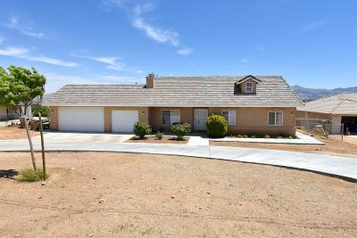 Hesperia Single Family Home For Sale: 7255 Dalscote Street