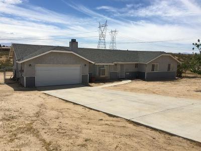 Victorville Single Family Home For Sale: 16131 Llanada Avenue