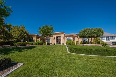 Victorville Single Family Home For Sale: 12592 Autumn Leaves Avenue