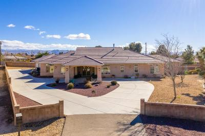 Apple Valley Single Family Home For Sale: 14640 Choco Lane