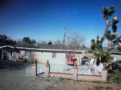 Hesperia Single Family Home For Sale: 16174 Pine Street