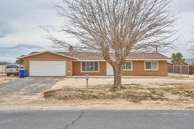 Apple Valley Single Family Home For Sale: 13905 Jicarilla Road