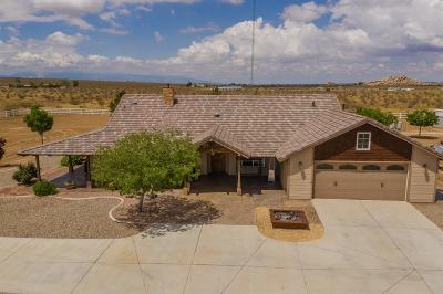 Apple Valley Single Family Home For Sale: 11880 Lagartijo Drive