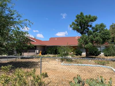 Hesperia Single Family Home For Sale: 9352 Ponderosa Avenue