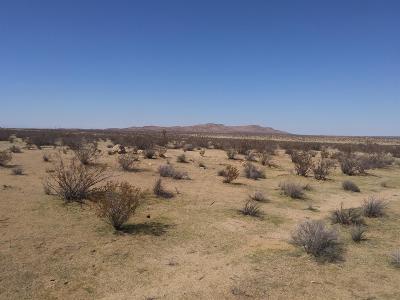 El Mirage Residential Lots & Land For Sale: Verano Road