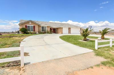 Apple Valley Single Family Home For Sale: 15834 Cheyenne Road