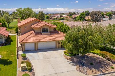 Victorville Single Family Home For Sale: 17875 Sage Hen Road