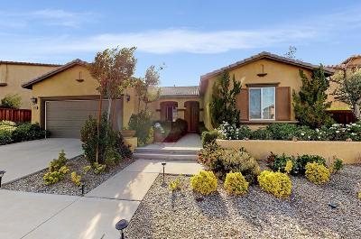Adelanto Single Family Home For Sale: 14192 Sierra Grande Street