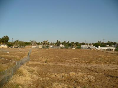 Hesperia Residential Lots & Land For Sale: Choiceana Avenue