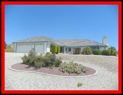 Apple Valley Single Family Home For Sale: 16457 Viho Road