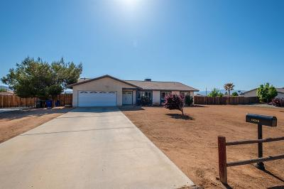 Apple Valley Single Family Home For Sale: 15245 Blackfoot Road