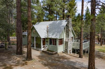 Wrightwood Single Family Home For Sale: 1100 Partridge Road