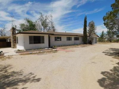 Lucerne Valley Single Family Home For Sale: 11000 Midway Avenue