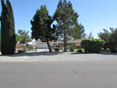 Hesperia Single Family Home For Sale: 17771 Eucalyptus Street