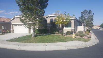Apple Valley Single Family Home For Sale: 10041 El Dorado Street