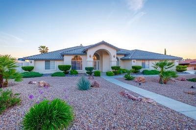 Apple Valley Single Family Home For Sale: 13530 Sunset Drive