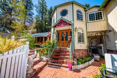 Wrightwood Single Family Home For Sale: 5194 Lone Pine Canyon Road