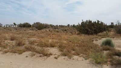 Hesperia Residential Lots & Land For Sale: Kittering Road