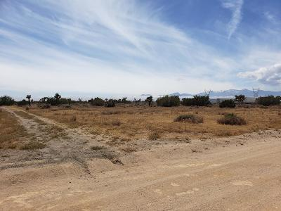 Hesperia CA Residential Lots & Land For Sale: $130,000