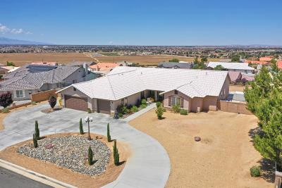 Apple Valley Single Family Home For Sale: 20248 Majestic Drive