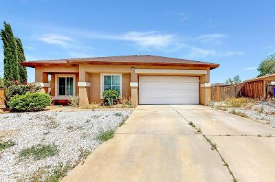 Adelanto Single Family Home For Sale: 10631 Plainfield Street