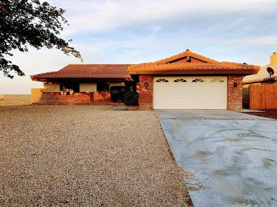 Helendale Single Family Home For Sale: 27639 Cloverleaf Drive