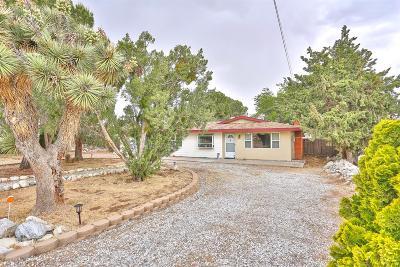 Hesperia Single Family Home For Sale: 16700 Palm Street