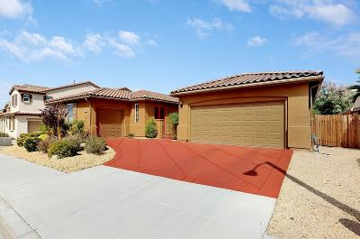 Victorville Single Family Home For Sale: 14939 Butler Peak Court