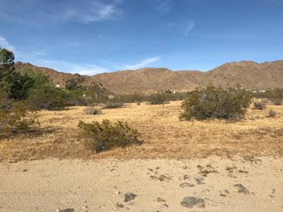 Apple Valley Residential Lots & Land For Sale: Burns Drive