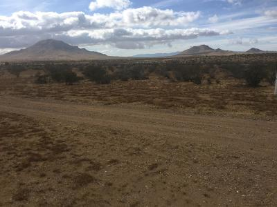 Apple Valley Residential Lots & Land For Sale: Pauma Road