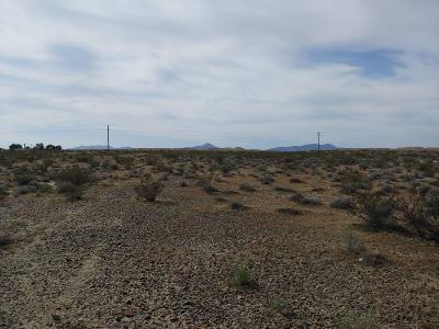 Newberry Springs CA Residential Lots & Land For Sale: $25,000