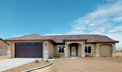 Apple Valley Single Family Home For Sale: 22560 Pahute Road