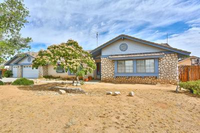 Apple Valley Single Family Home For Sale: 13302 Cochise Road