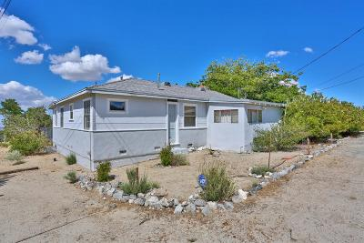 Pinon Hills Single Family Home For Sale: 9889 Acorn Road