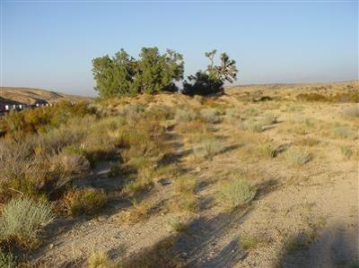 Hesperia CA Residential Lots & Land For Sale: $32,000