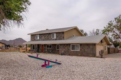 Apple Valley Single Family Home For Sale: 21250 Zuni Road