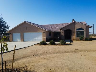 Victorville Single Family Home For Sale: 10280 Olivine Road