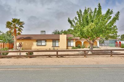 Hesperia Single Family Home For Sale: 8306 Madera Avenue