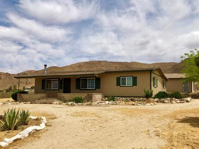Apple Valley Single Family Home For Sale: 25375 Standing Rock Road