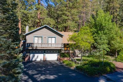 Wrightwood Single Family Home For Sale: 23310 N Flume Canyon Drive