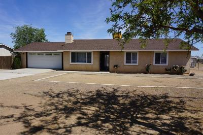 Victorville Single Family Home For Sale: 15524 Jasmine Street