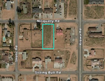 San Bernardino County Residential Lots & Land For Sale: Nisqually Road