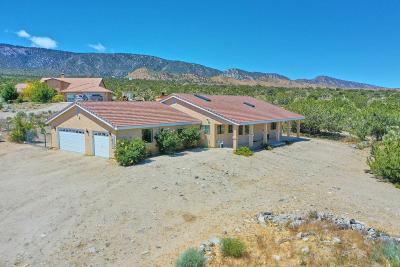 Pinon Hills Single Family Home For Sale: 10198 Pineview Road